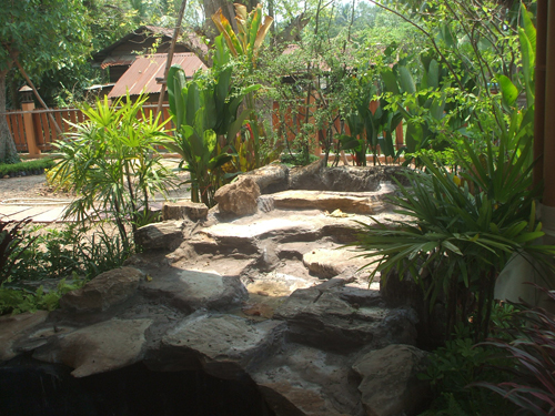 New Thai Garden Transformation (nearly) complete - Thai Garden ...