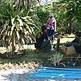 Sprinkler_system_thailand