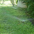 Sprinker System in Thailand