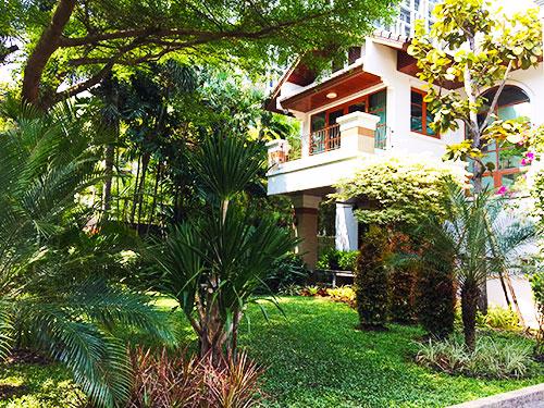 tropical garden scape thailand