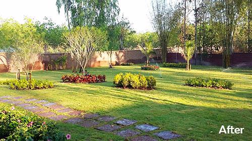 garden design and team bangkok