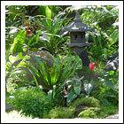 The Thai Tropical Garden